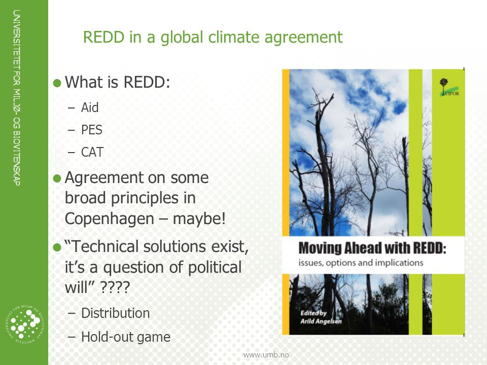 REDD in a global climate agreement