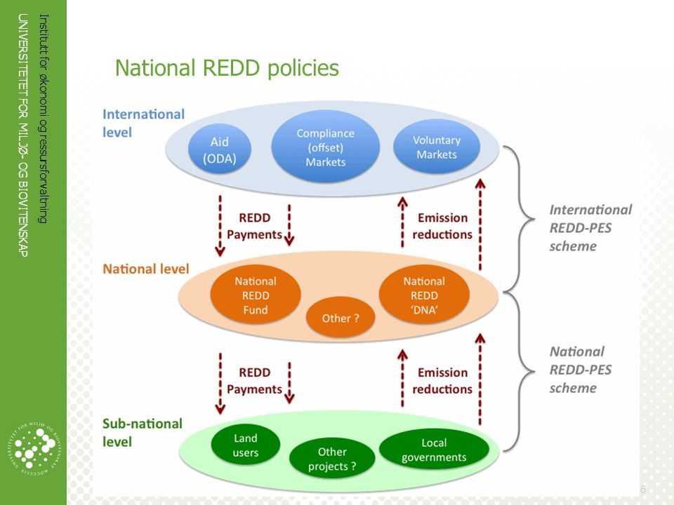 National REDD policies
