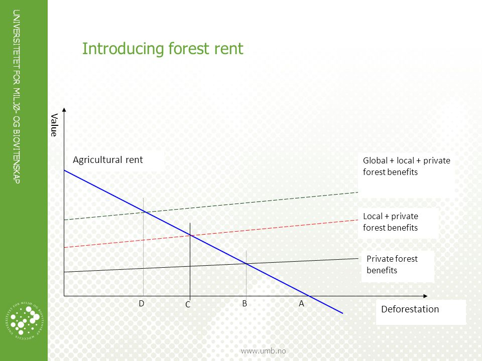 Introducing forest rent