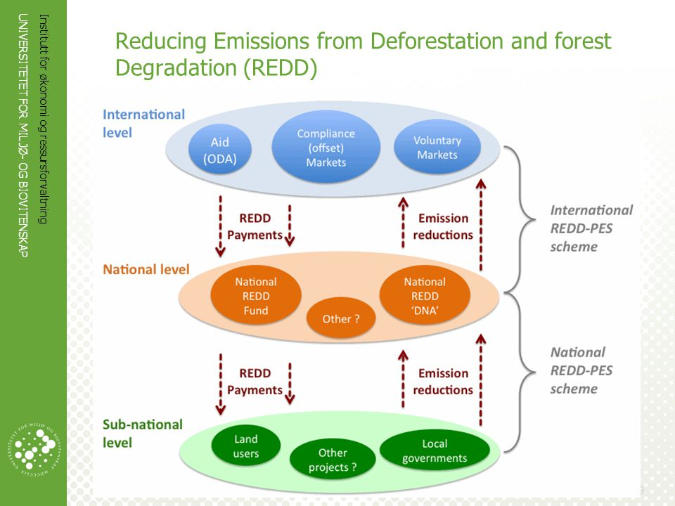 Reducing Emissions from Deforestation and forest Degradation (REDD)