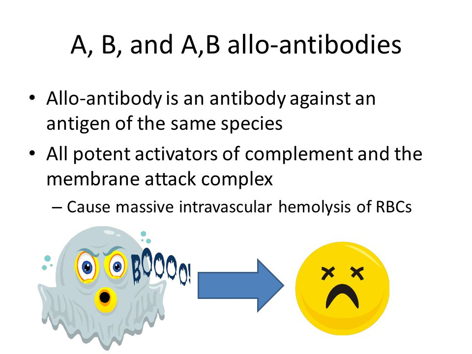 A, B, and A,B allo-antibodies