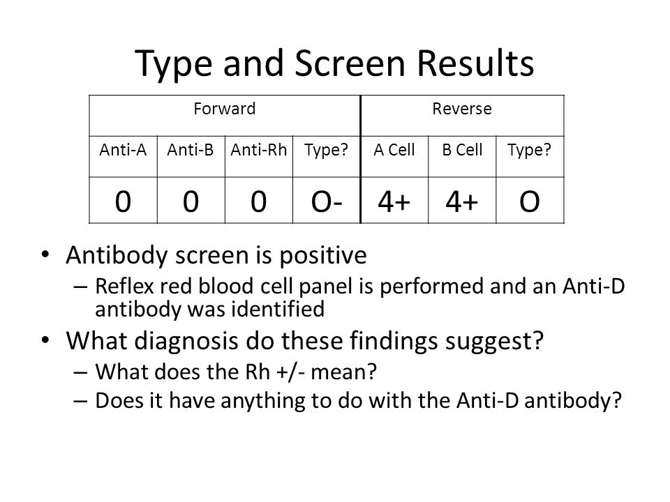 Type and Screen Results