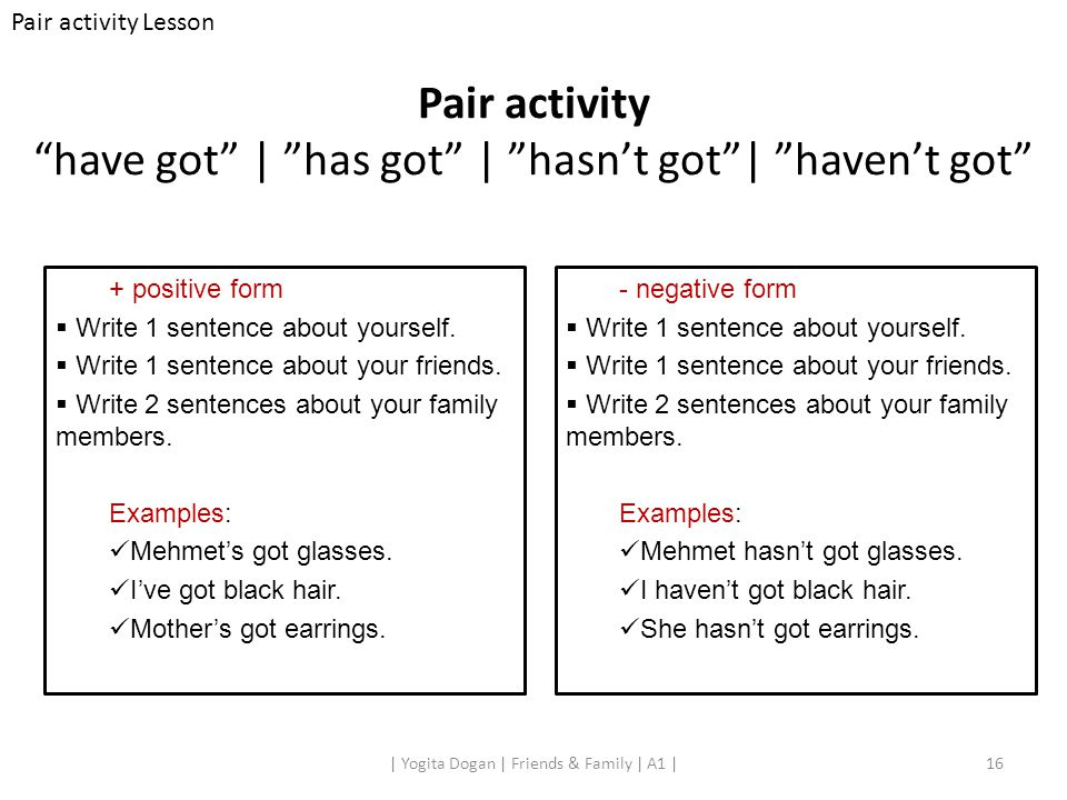 Pair activity have got | has got | hasn't got | haven't got