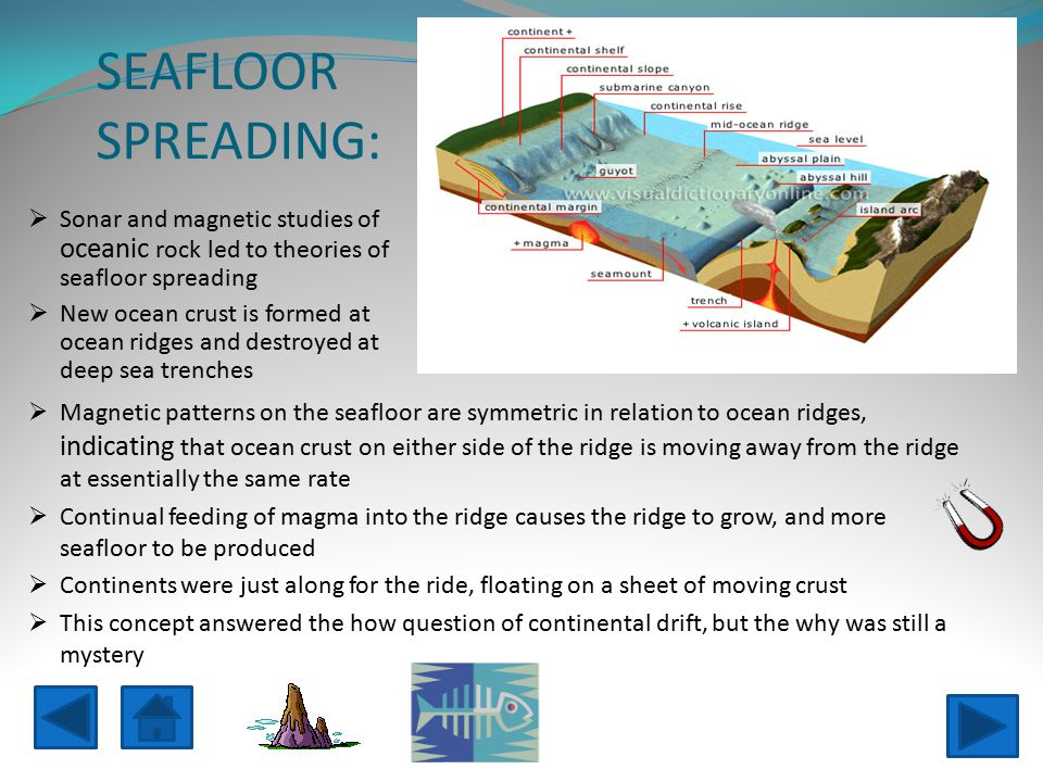 SEAFLOOR SPREADING: Sonar and magnetic studies of oceanic rock led to theories of seafloor spreading.