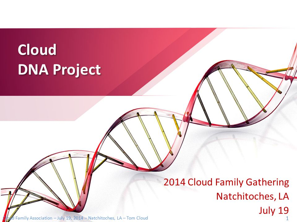 2014 Cloud Family Gathering Natchitoches, LA July 19