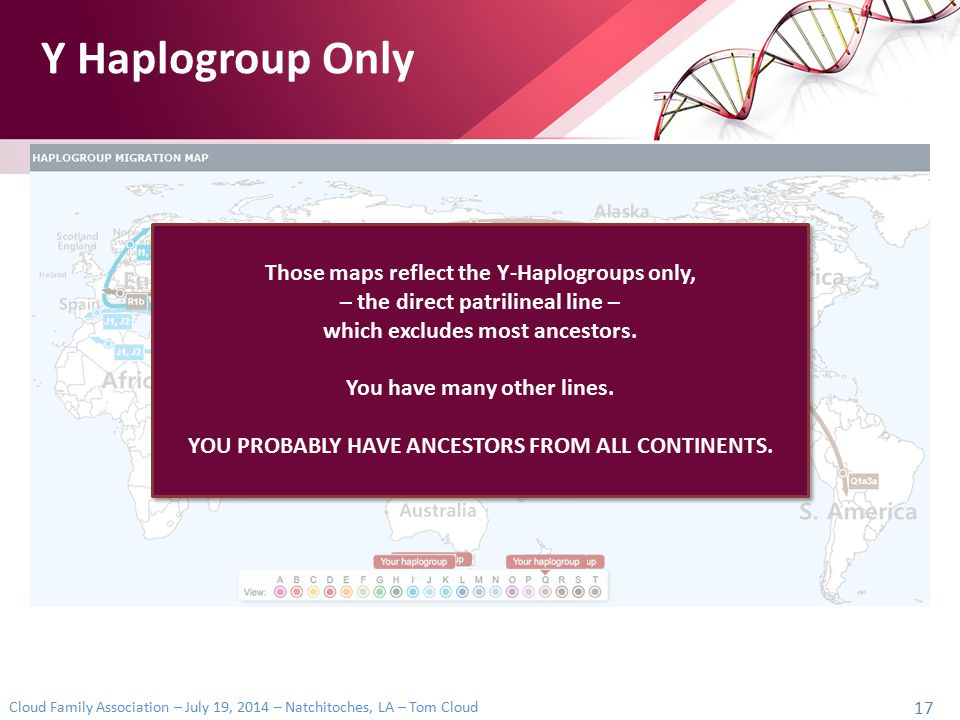 Y Haplogroup Only Those maps reflect the Y-Haplogroups only,