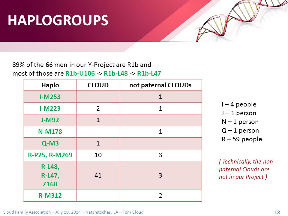 HAPLOGROUPS 89% of the 66 men in our Y-Project are R1b and