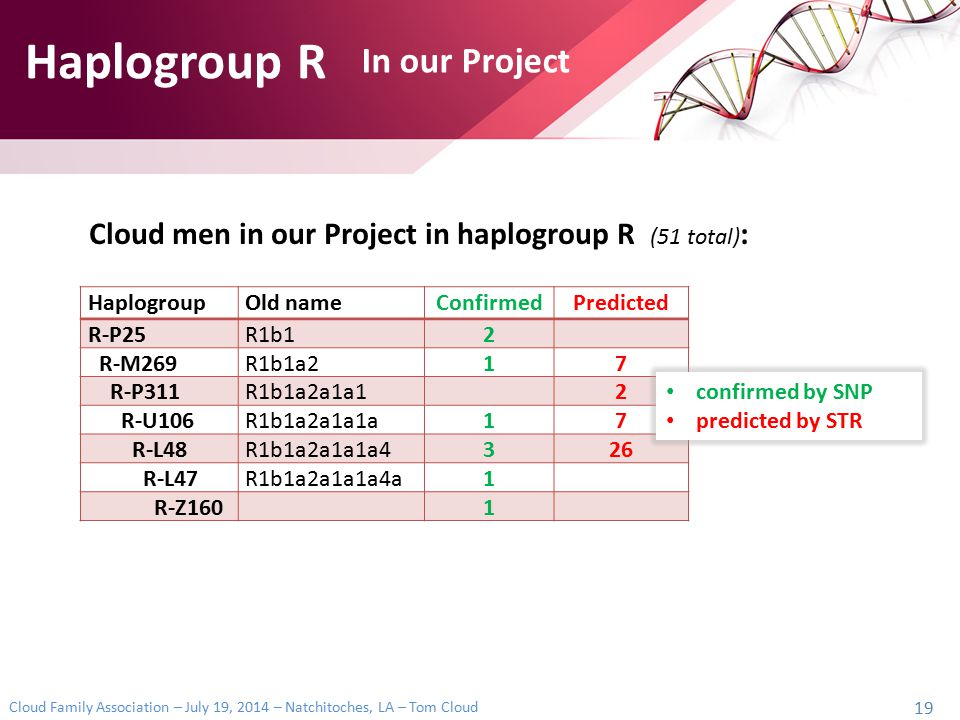 Haplogroup R In our Project
