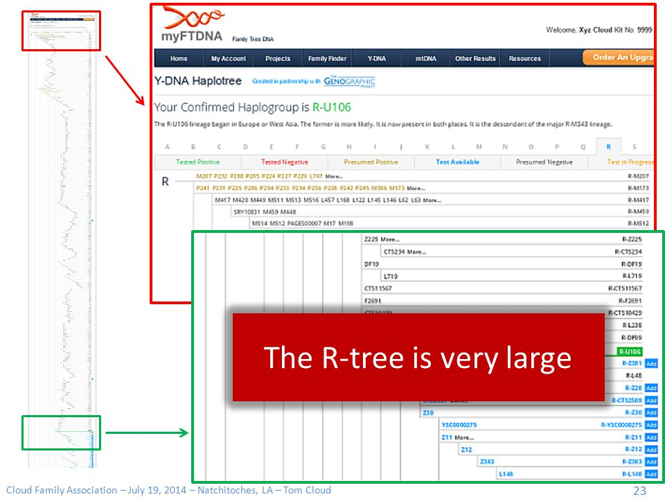 The R-tree is very large