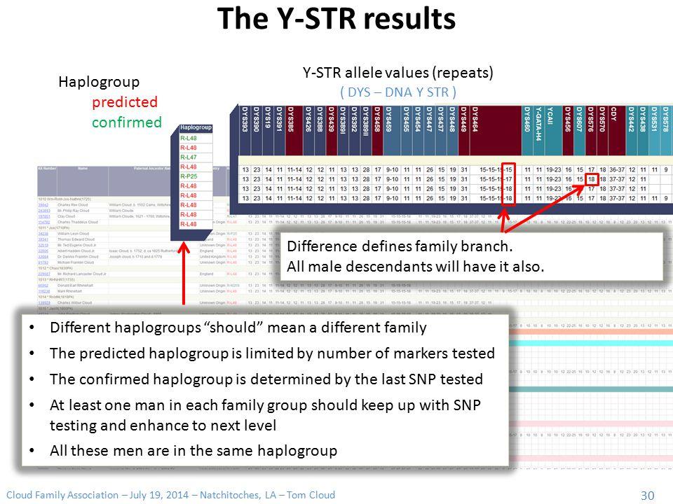 Y-STR allele values (repeats)