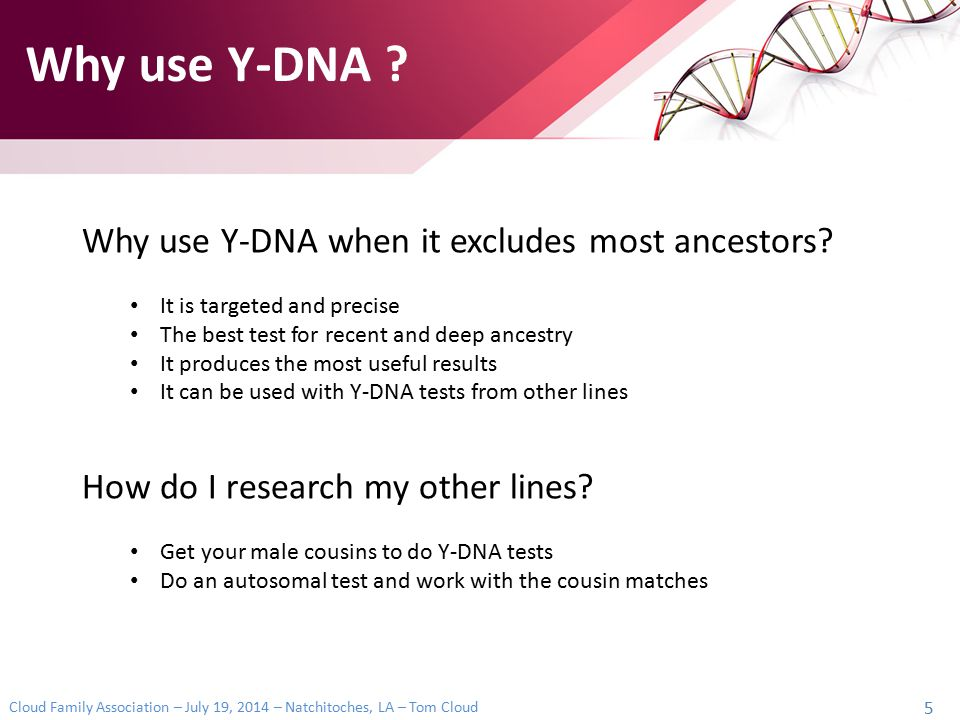 Why use Y-DNA Why use Y-DNA when it excludes most ancestors