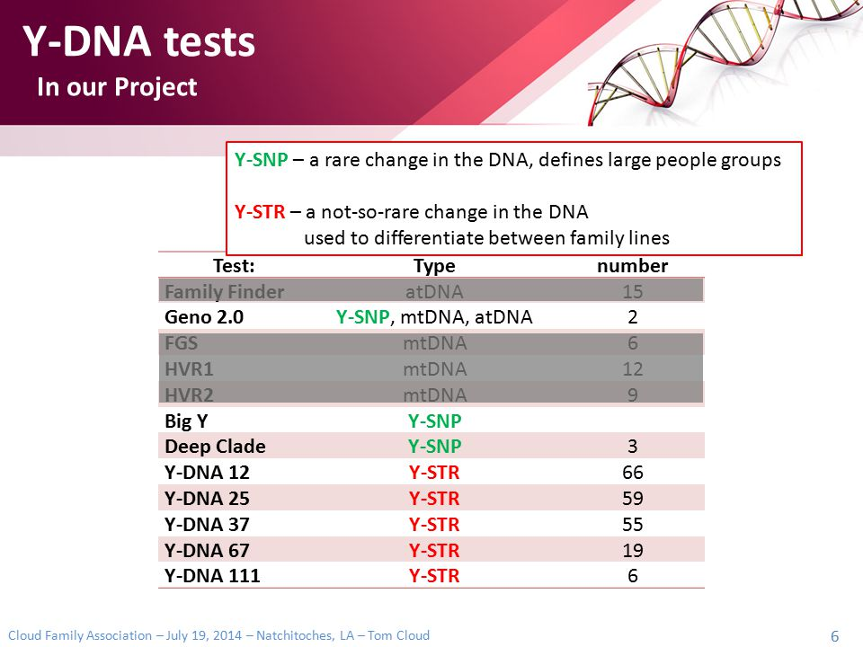 Y-DNA tests In our Project