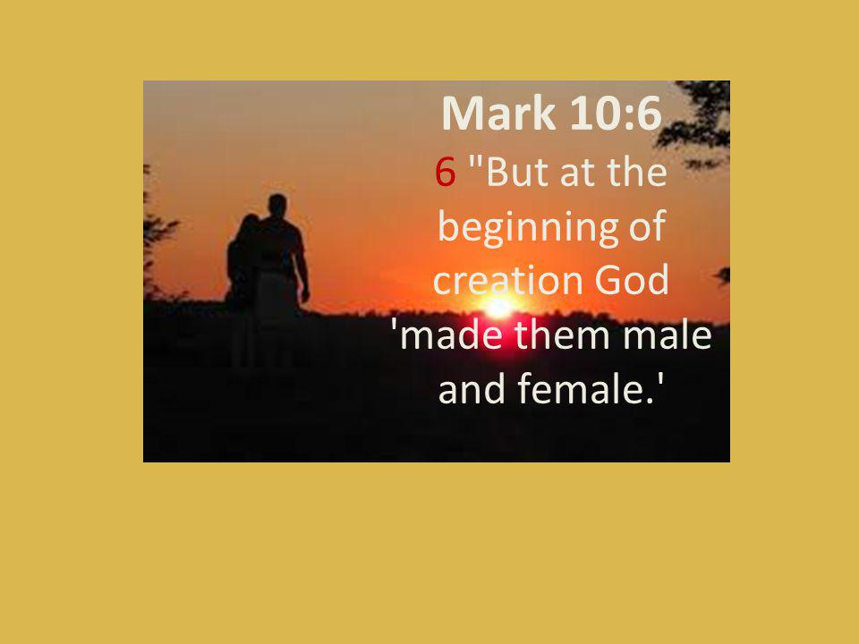 Mark 10:6 6 But at the beginning of creation God made them male and female.