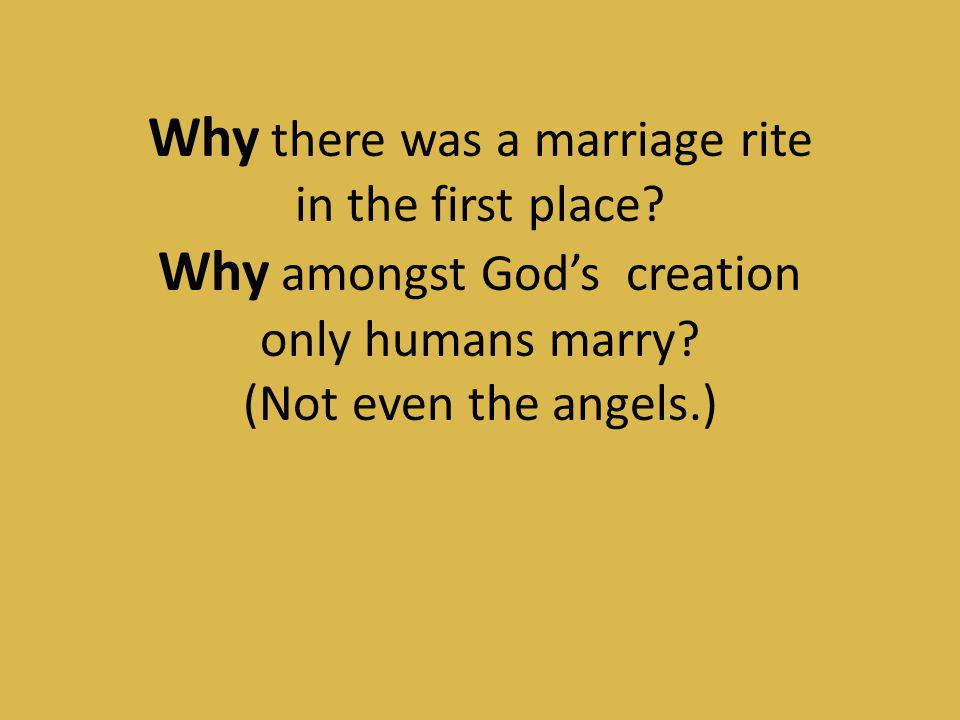Why there was a marriage rite Why amongst God's creation