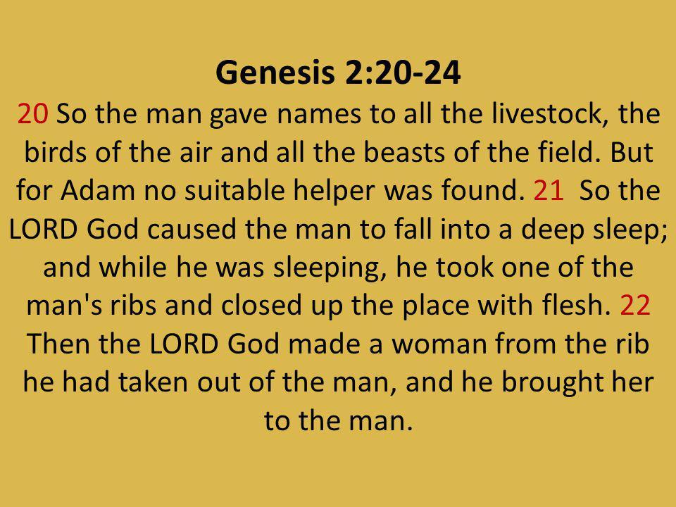 Genesis 2:20-24
