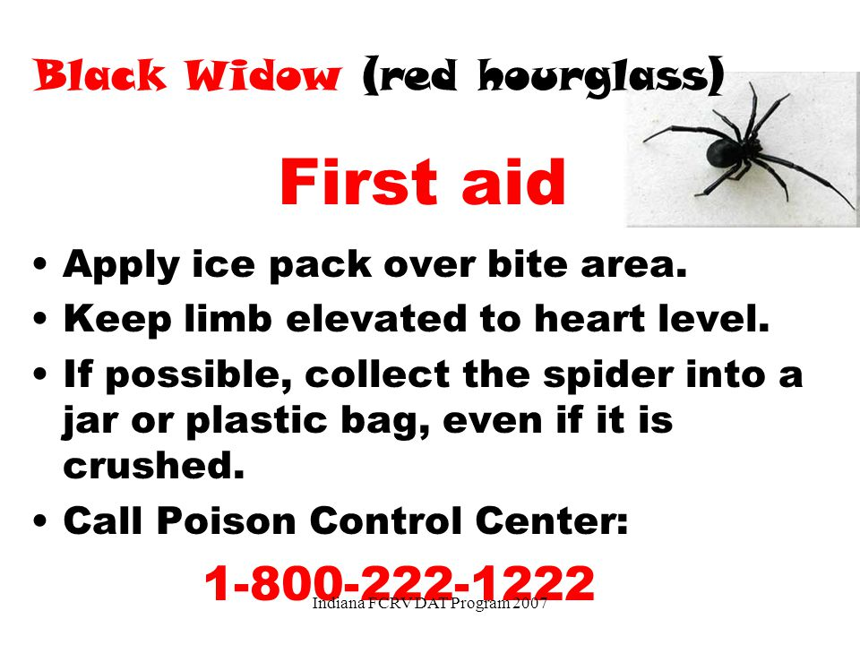 First aid 1-800-222-1222 Black Widow (red hourglass)