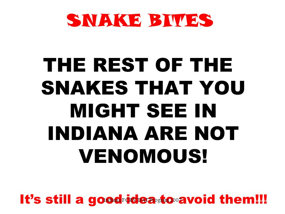 THE REST OF THE SNAKES THAT YOU MIGHT SEE IN INDIANA ARE NOT VENOMOUS!