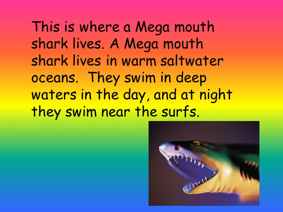This is where a Mega mouth shark lives