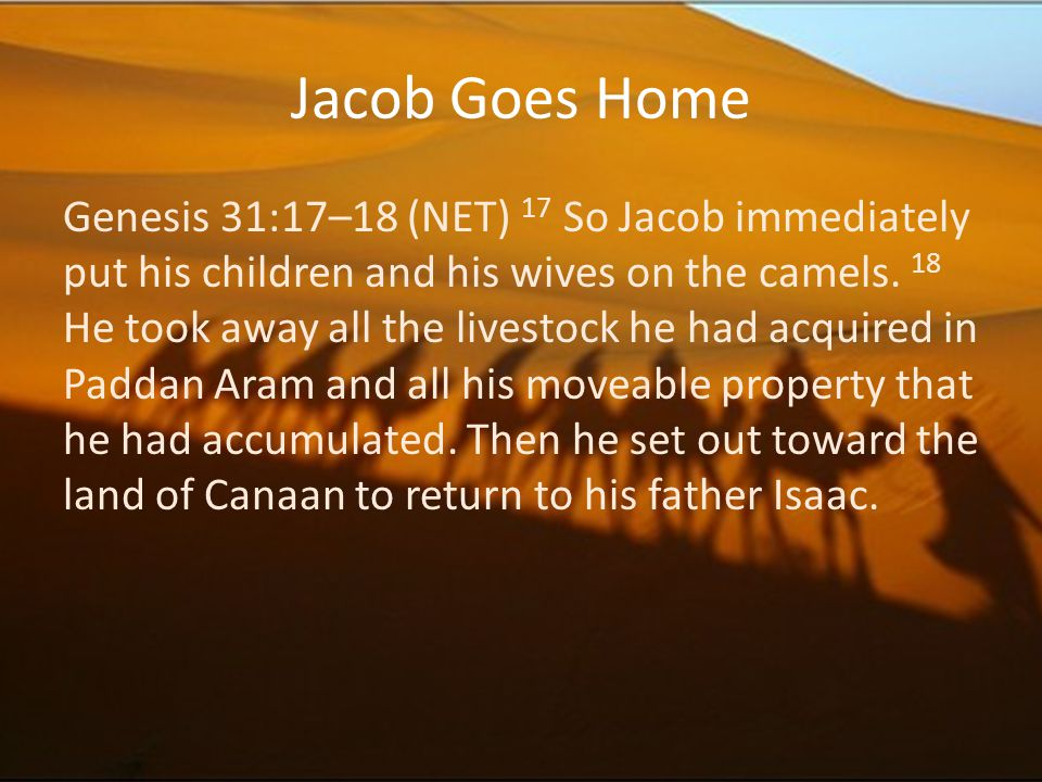 Jacob Goes Home
