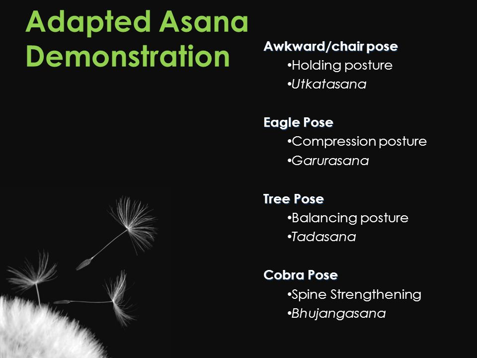 Adapted Asana Demonstration