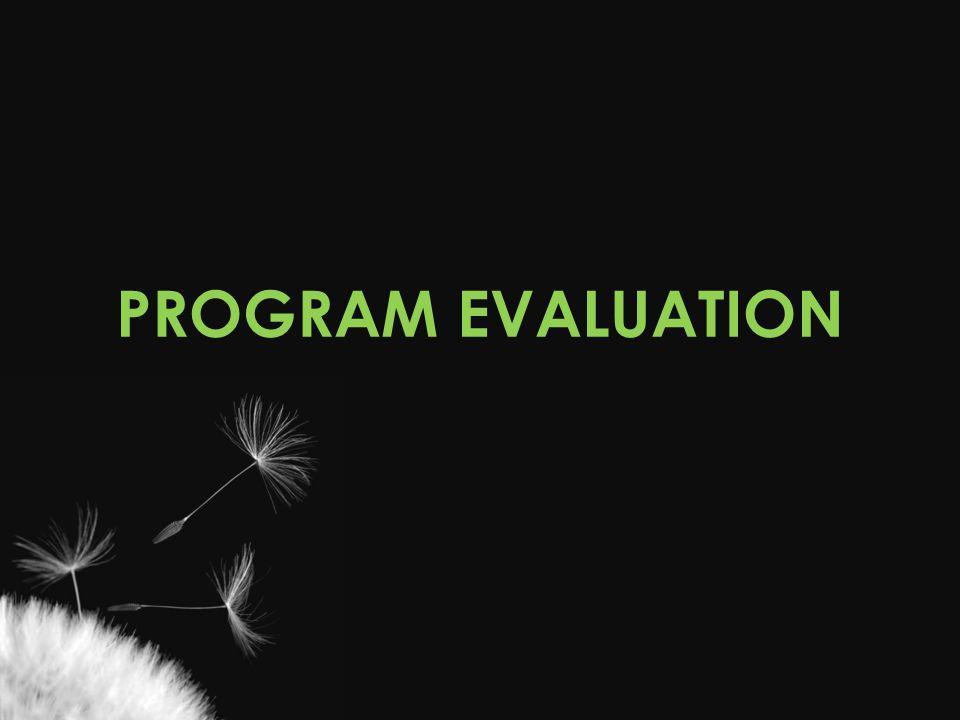PROGRAM EVALUATION Amy Feedback from veterans Qualitative