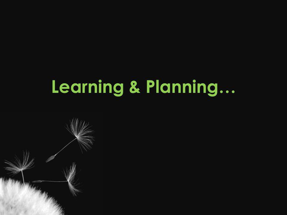 Learning & Planning… Casey From a recreational therapy perspective…