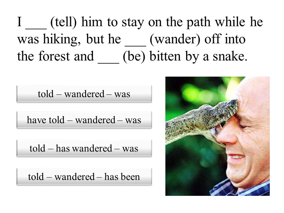 I ___ (tell) him to stay on the path while he was hiking, but he ___ (wander) off into the forest and ___ (be) bitten by a snake.