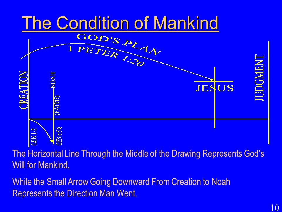 The Condition of Mankind