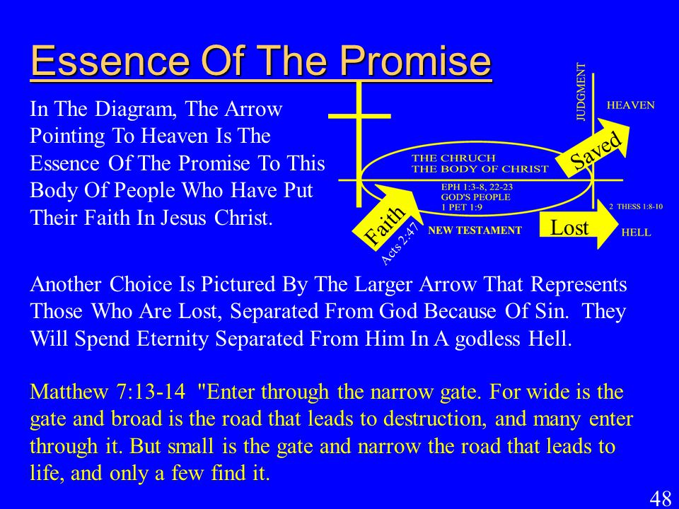 Essence Of The Promise
