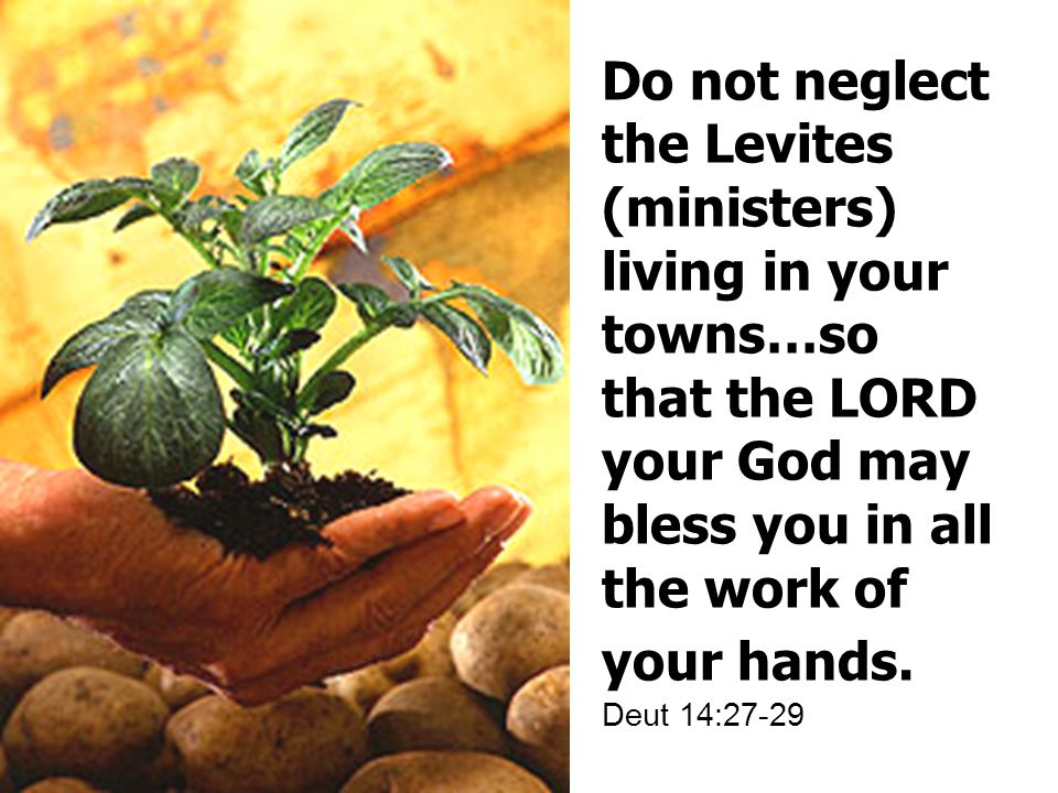 Do not neglect the Levites (ministers) living in your towns…so that the LORD your God may bless you in all the work of your hands.