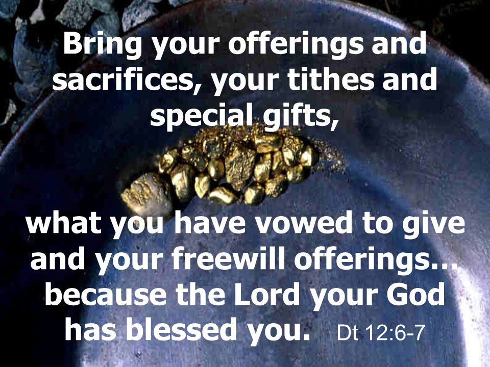 Bring your offerings and sacrifices, your tithes and special gifts, what you have vowed to give and your freewill offerings… because the Lord your God has blessed you.