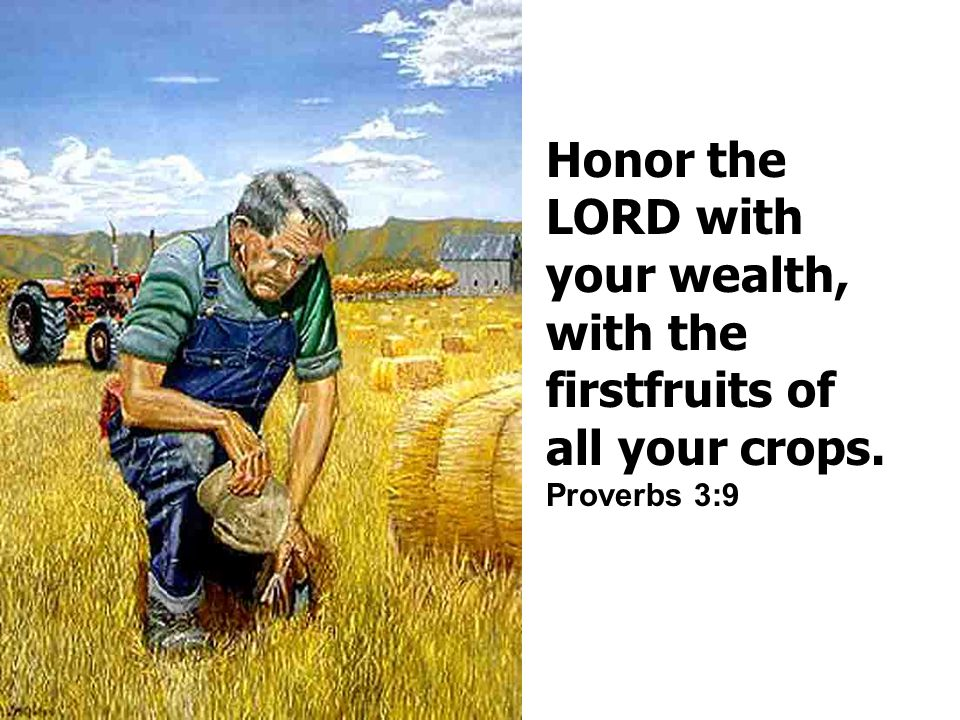 Honor the LORD with your wealth, with the firstfruits of all your crops. Proverbs 3:9