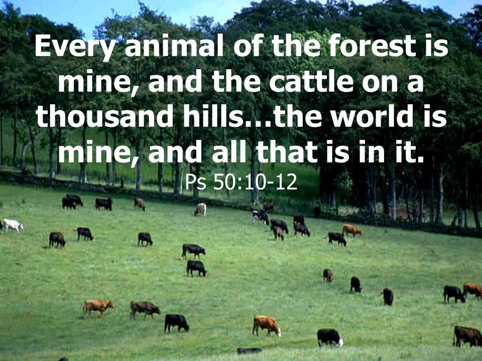 Every animal of the forest is mine, and the cattle on a thousand hills…the world is mine, and all that is in it.