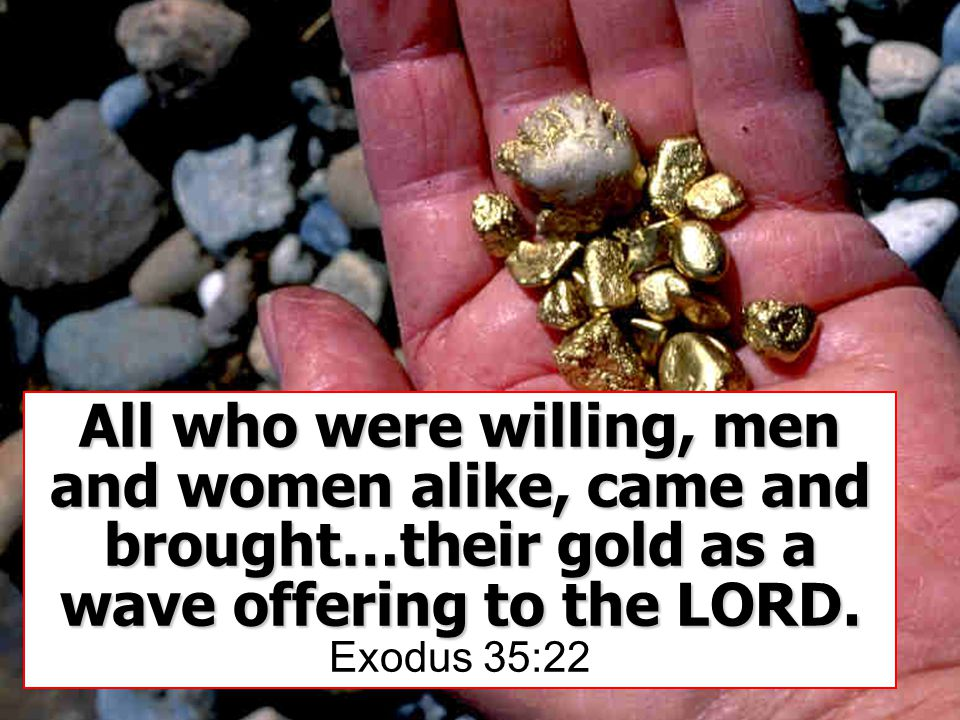 All who were willing, men and women alike, came and brought…their gold as a wave offering to the LORD.