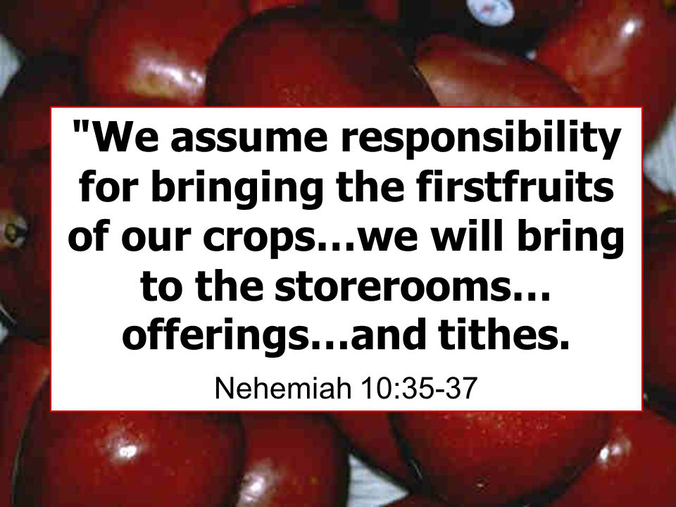 We assume responsibility for bringing the firstfruits of our crops…we will bring to the storerooms… offerings…and tithes.
