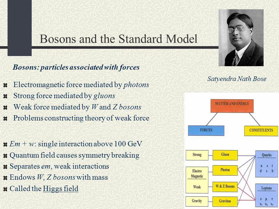 Bosons and the Standard Model