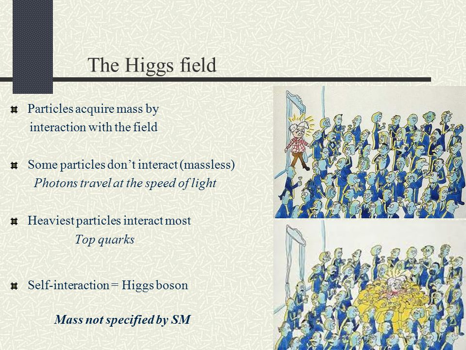 The Higgs field Particles acquire mass by interaction with the field