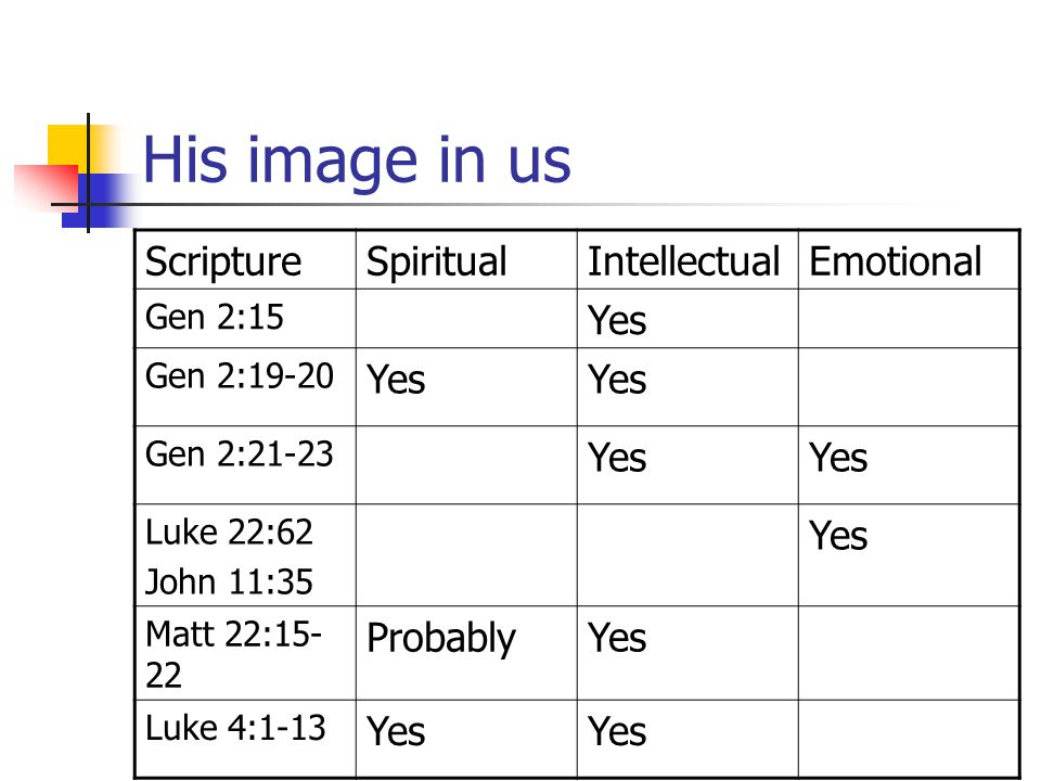 His image in us Scripture Spiritual Intellectual Emotional Yes