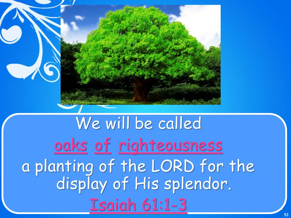 a planting of the LORD for the display of His splendor.