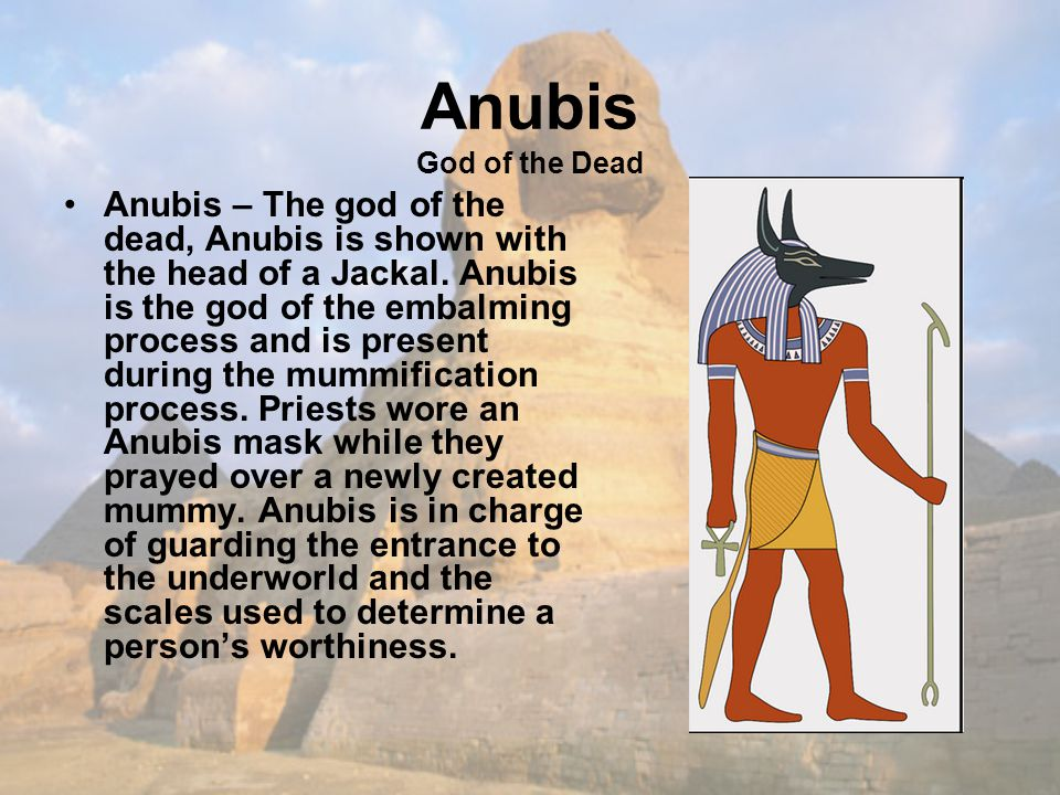 Anubis God of the Dead