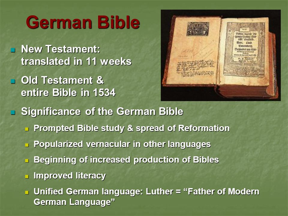 German Bible New Testament: translated in 11 weeks
