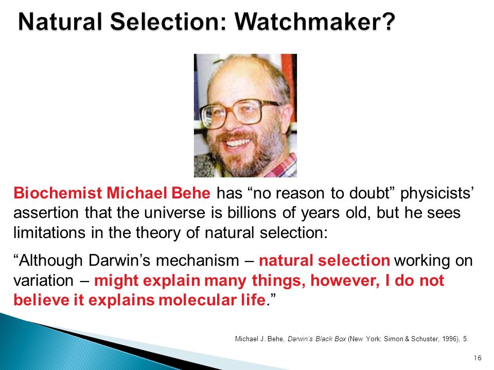 Natural Selection: Watchmaker