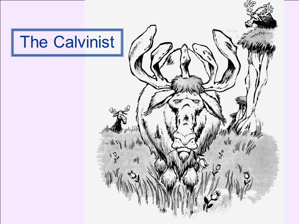 The Calvinist