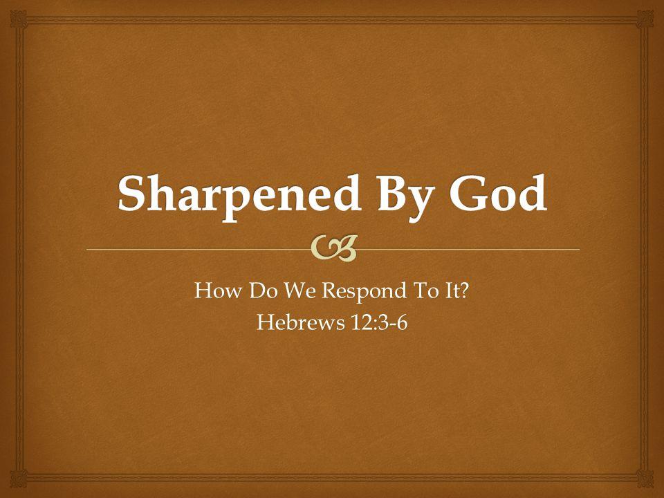 How Do We Respond To It Hebrews 12:3-6