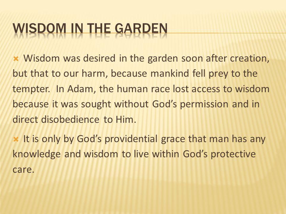 wisdom in the garden