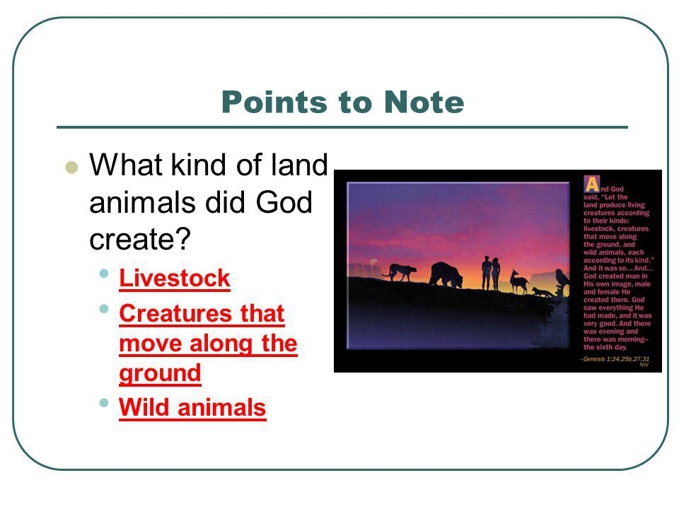 What kind of land animals did God create