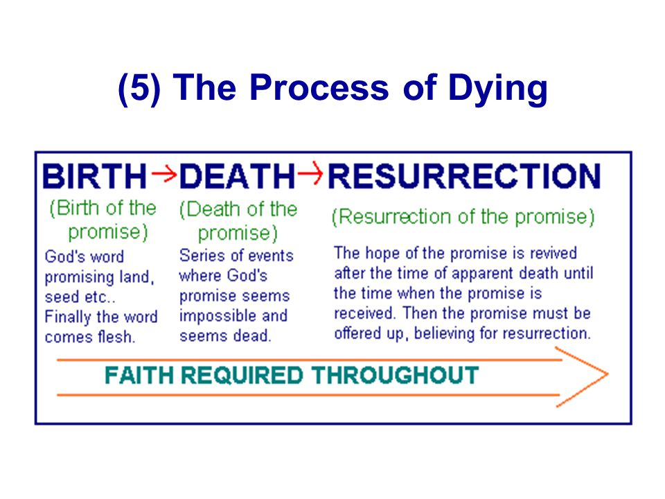 (5) The Process of Dying