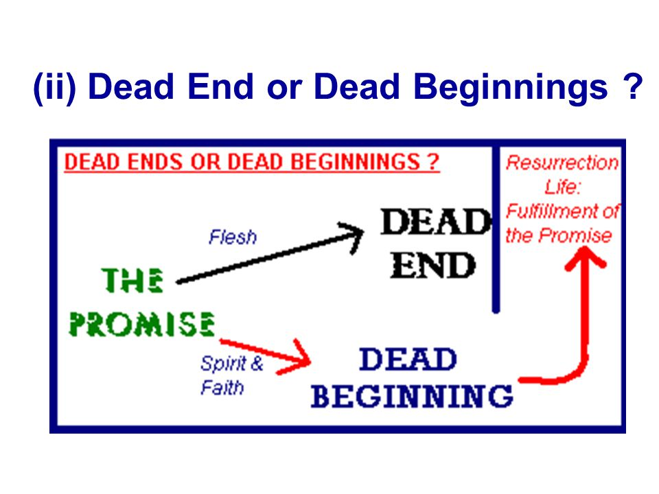 (ii) Dead End or Dead Beginnings