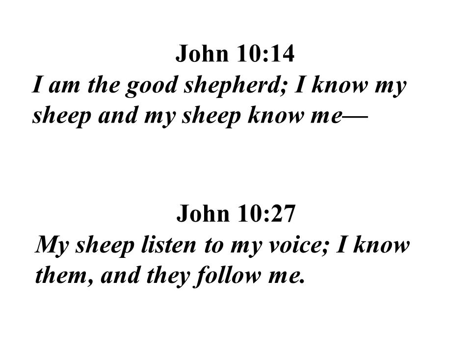 John 10:14 I am the good shepherd; I know my sheep and my sheep know me— John 10:27.