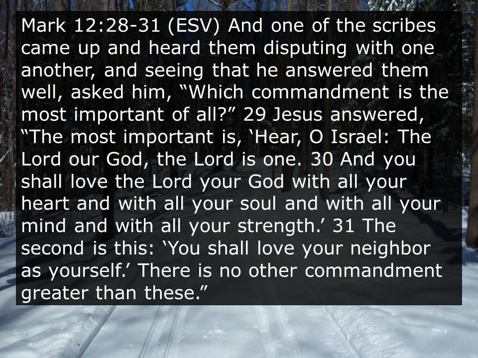 Mark 12:28-31 (ESV) And one of the scribes came up and heard them disputing with one another, and seeing that he answered them well, asked him, Which commandment is the most important of all 29 Jesus answered, The most important is, 'Hear, O Israel: The Lord our God, the Lord is one.